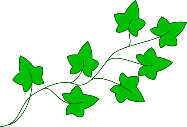 600x410 Leaf And Vine Clipart