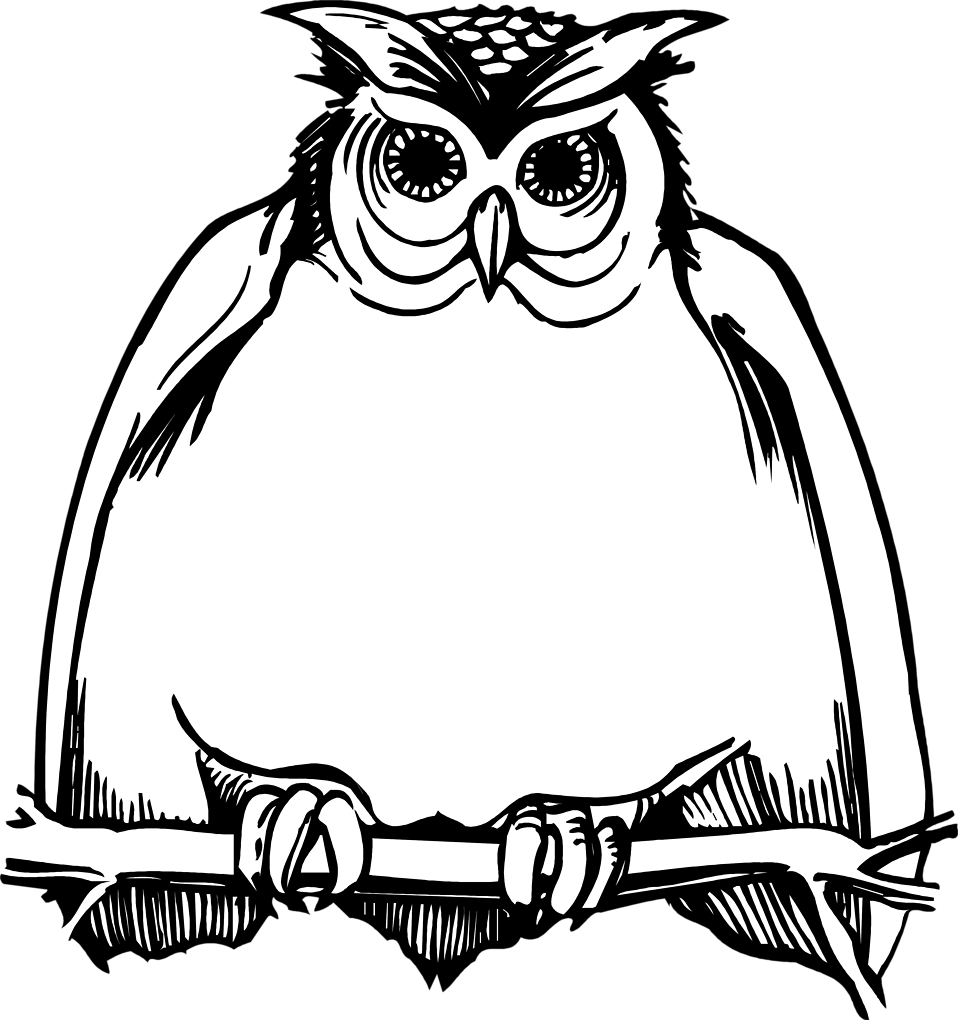 958x1020 Horned Owl Clipart Black And White