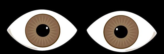 571x188 Eyeballs Brown Eyes Clipart Free Images