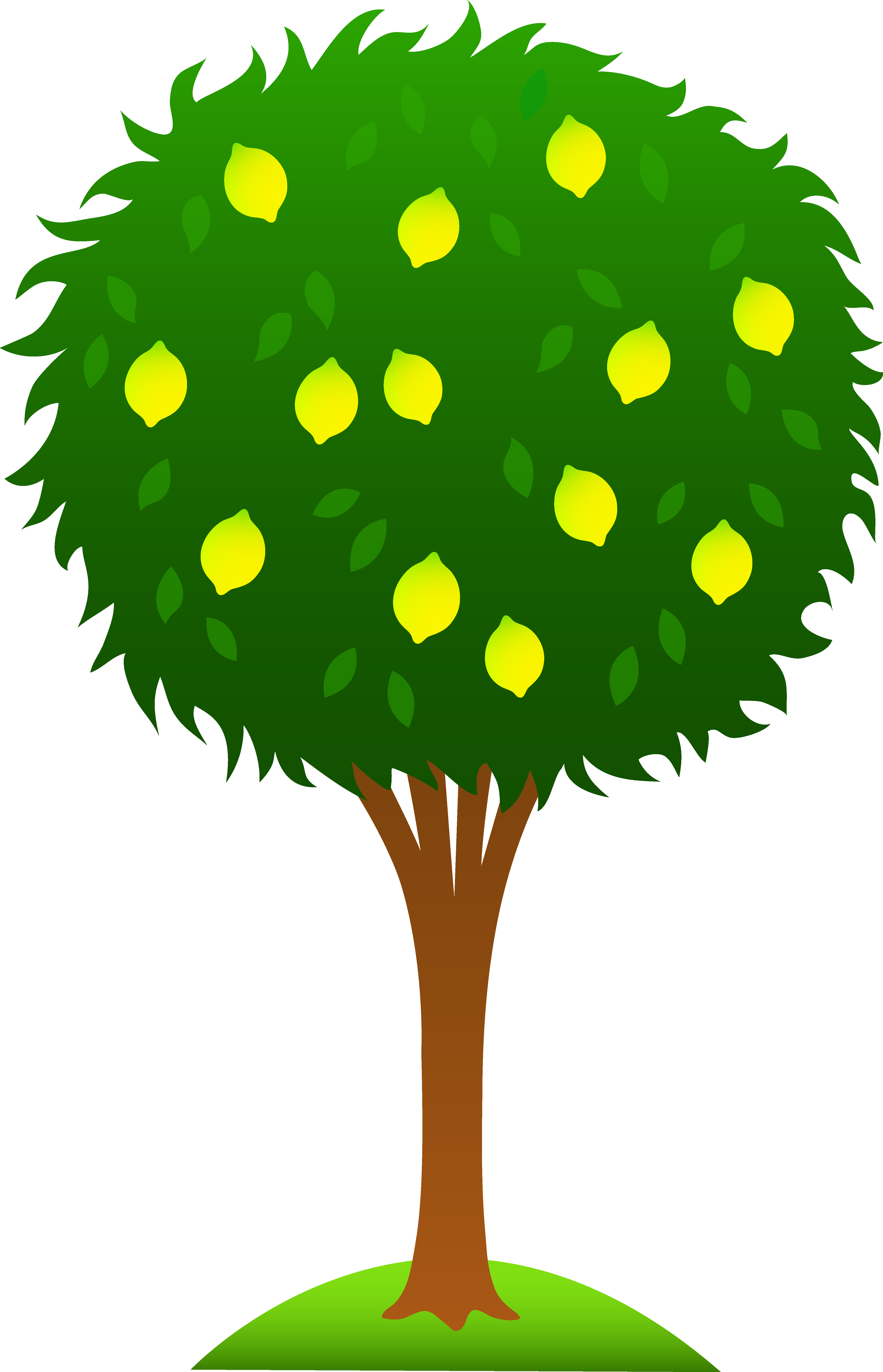 4325x6720 Bare Tree Clipart Free Clipart Images 2 Clipartcow
