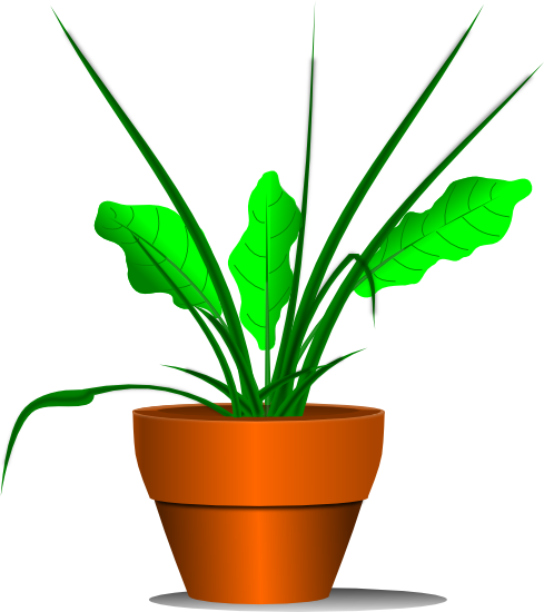489x550 Free Plant Clipart