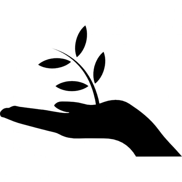 626x626 Plant A Tree Icons Free Download