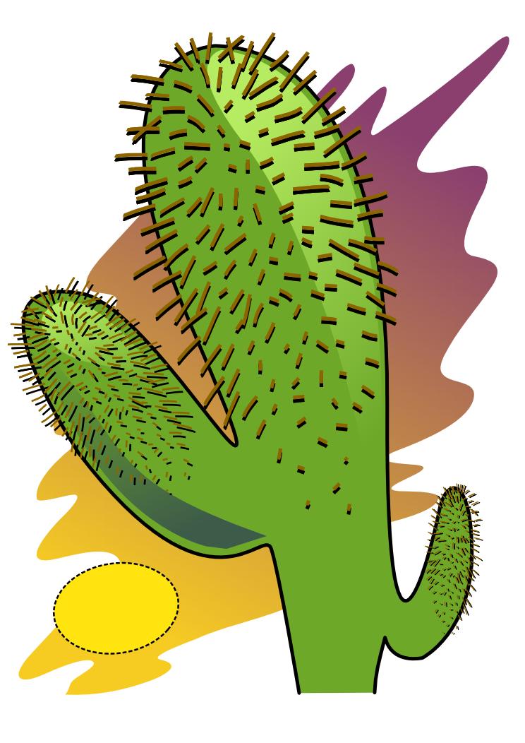 744x1052 Free Cactus Clipart
