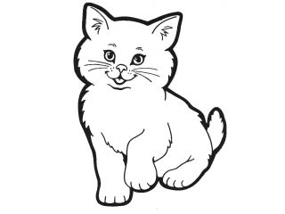 320x240 Printable Cat Pictures Cats Coloring Picture Cow Kids Coloring