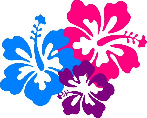 600x482 10 Best Hawaii Images Hawaii Flowers, Tourism