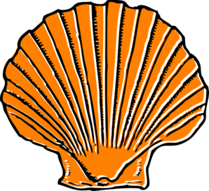 298x273 Orange Seashell Clip Art