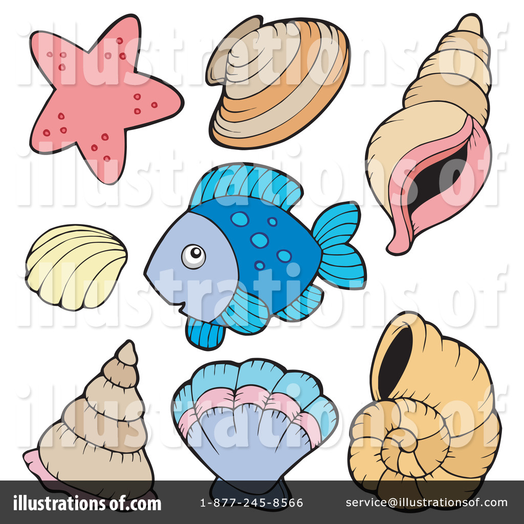 1024x1024 Sea Shells Clipart