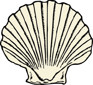 300x275 Seashell Clipart Black And White Clipart Free Clipart Images