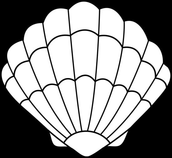 550x504 Seashell Lineart