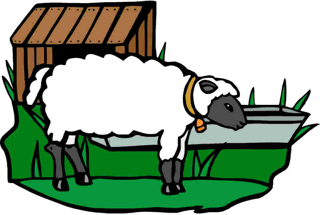 1024x689 Free Clip Art Sheep Face