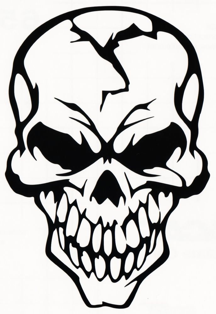 687x1000 Pictures Of A Skull Free Download Clip Art