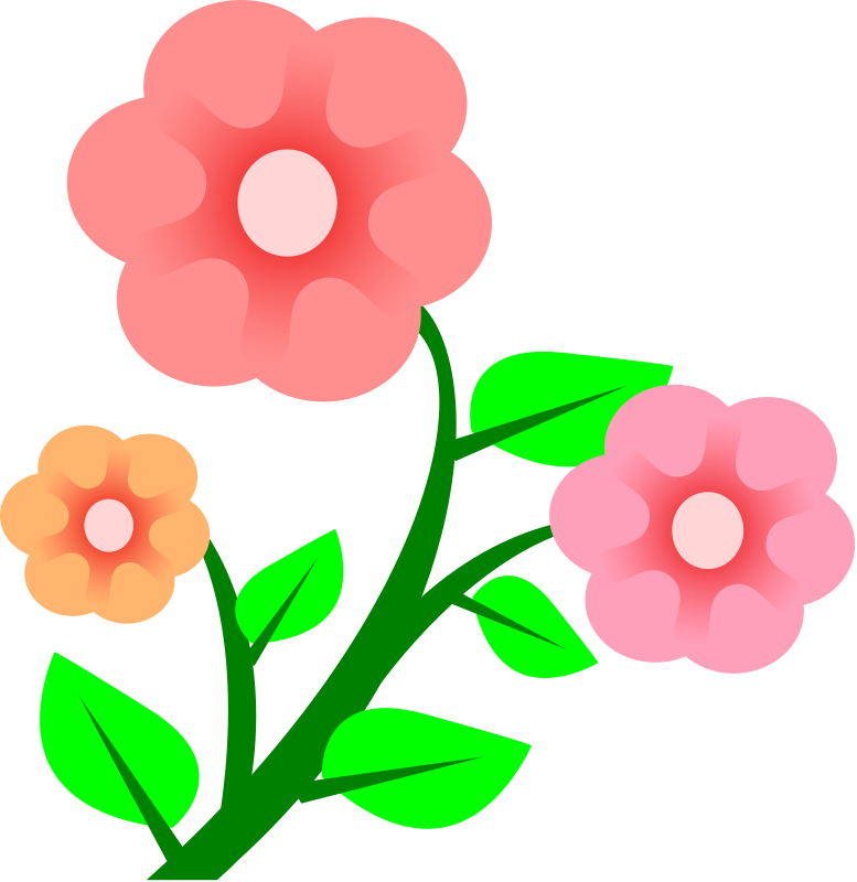 777x800 Clipart Flower Free Spring
