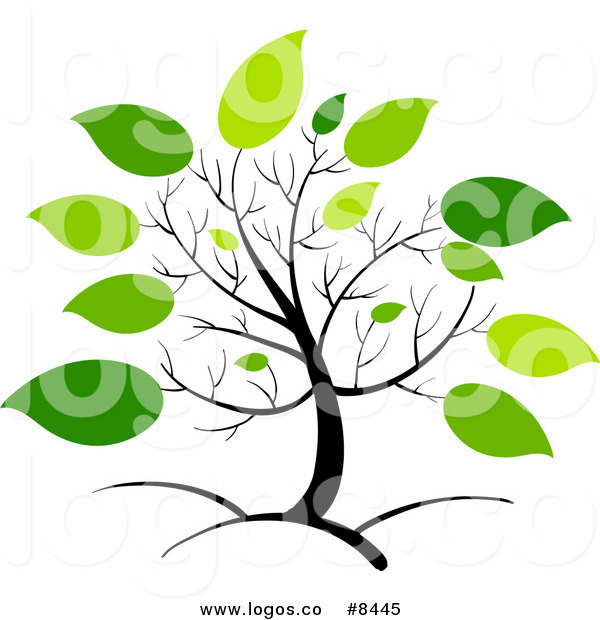 600x620 Royalty Free Clip Art Vector Logo Of A Spring Tree With Big Green
