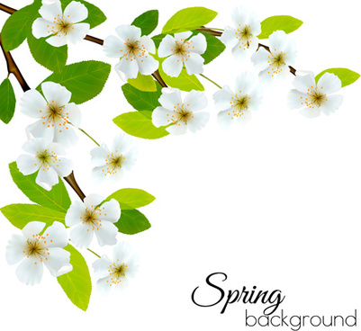 Free spring flower clipart free download best free spring flower 401x368 black and white flower clip art free vector download 214907 free mightylinksfo
