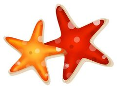 240x179 Starfish Illustrations And Clipart 1 Starfish Royalty Free Image