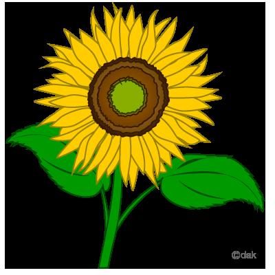 400x400 Sunflower Clip Art Free Clipart Images Clipartbold Clipartix