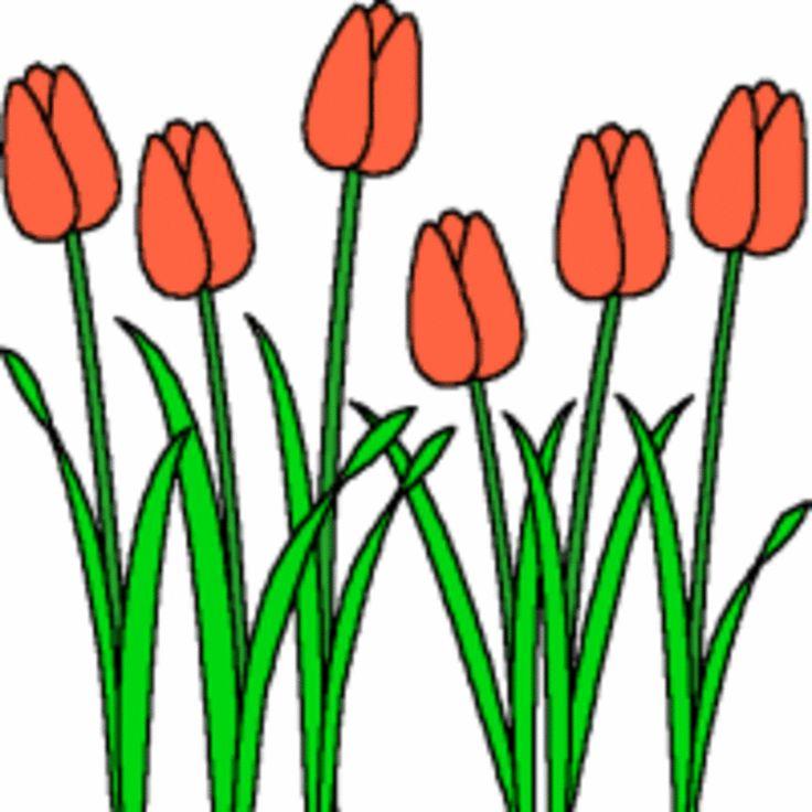 Free Tulip Clipart