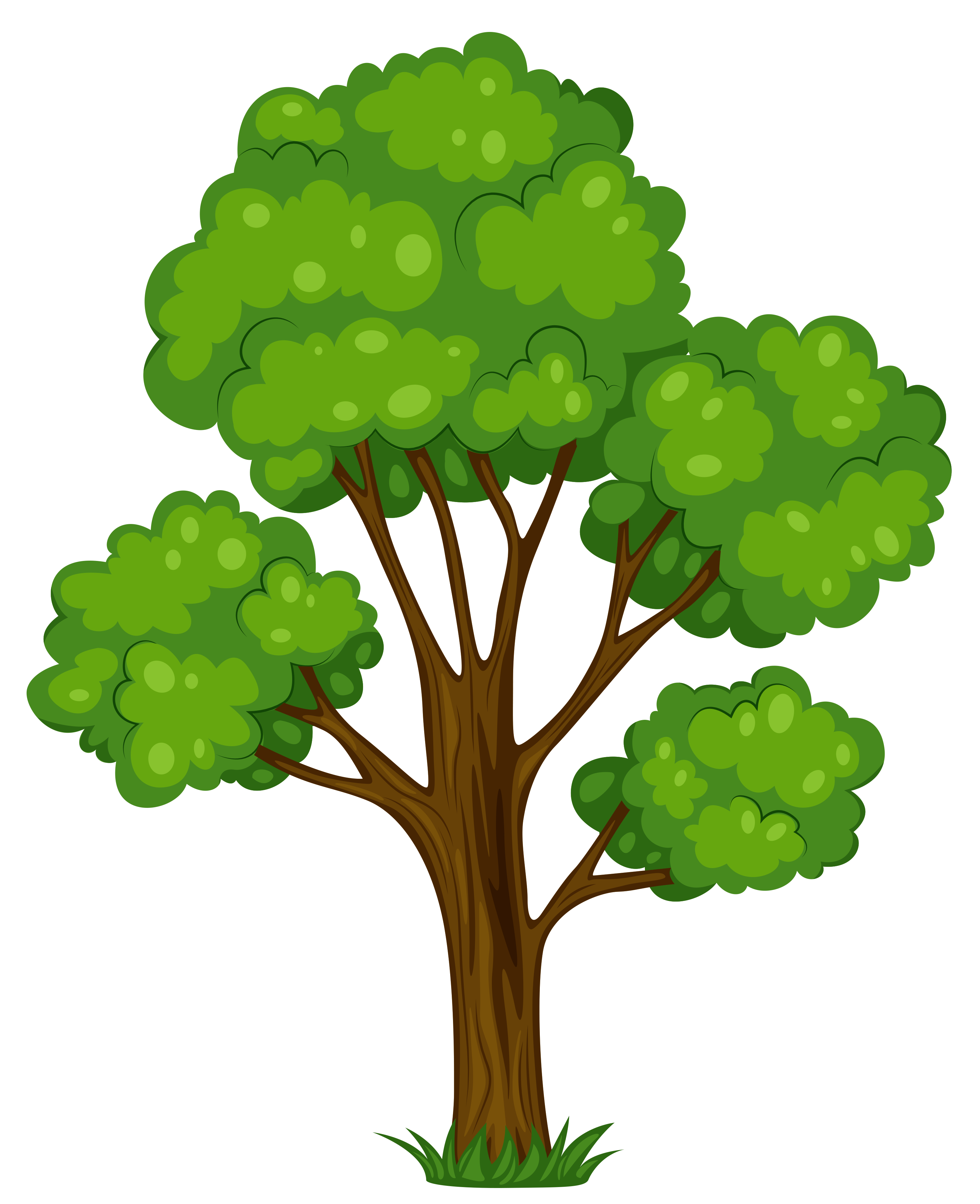 3126x3842 Clipart Free Trees