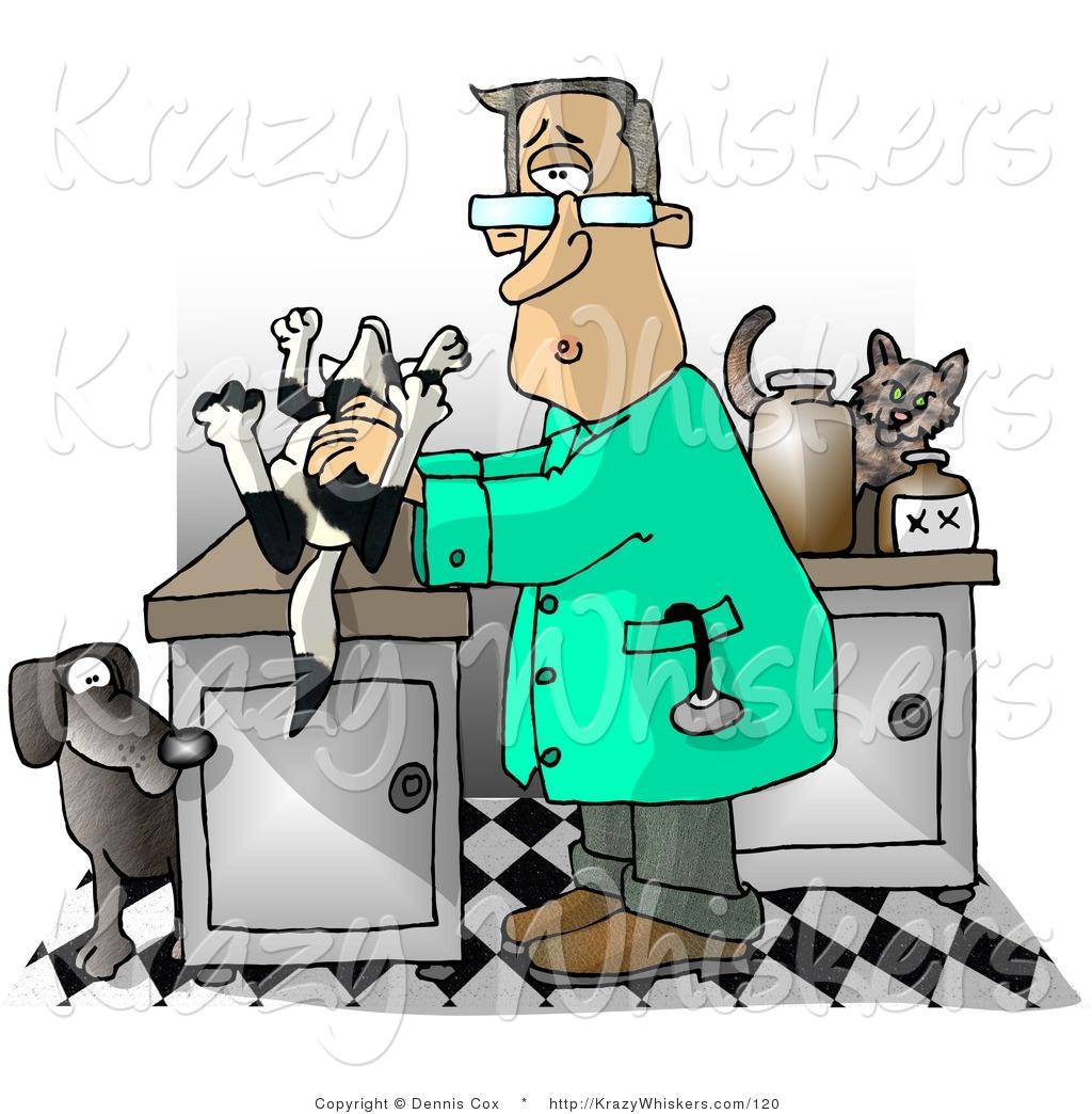 1024x1044 Cat Clipart Veterinarian