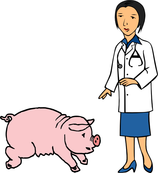 546x598 Doctor And Pig Clip Art