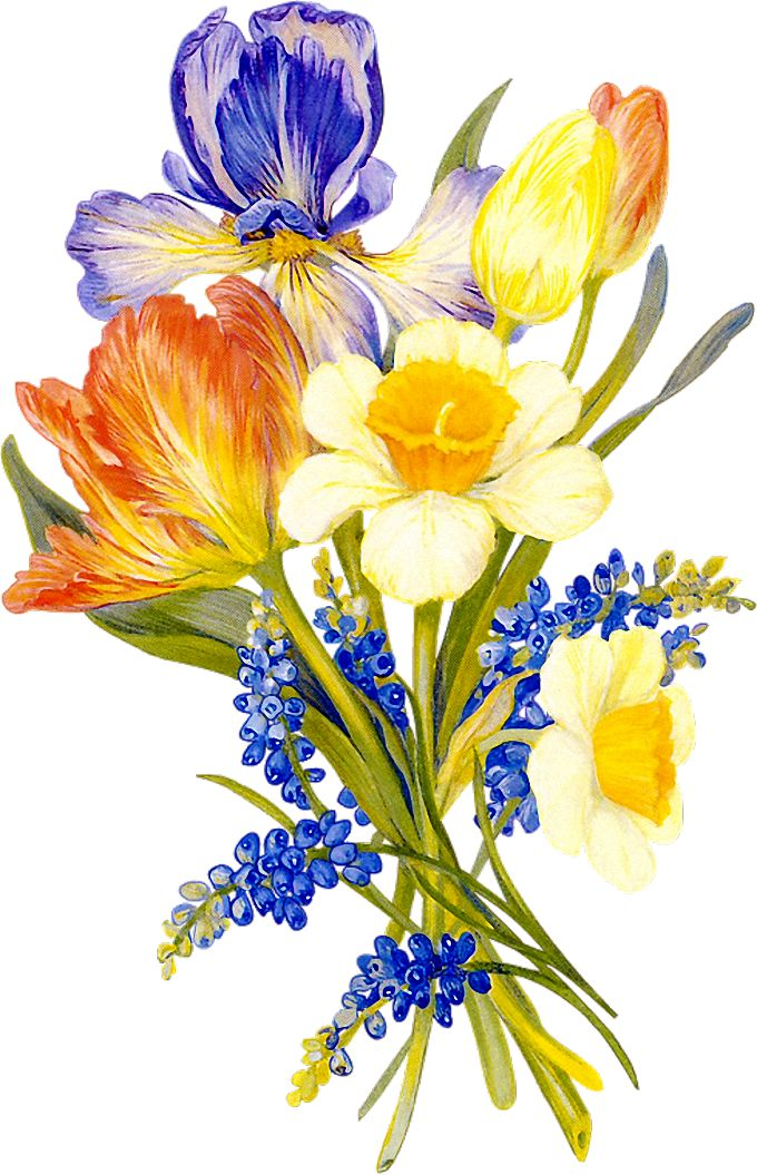 Free Vintage Flower Clipart