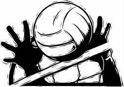 252x178 Volleyball Clipart Awesome And Free Volleyball Court Central 4