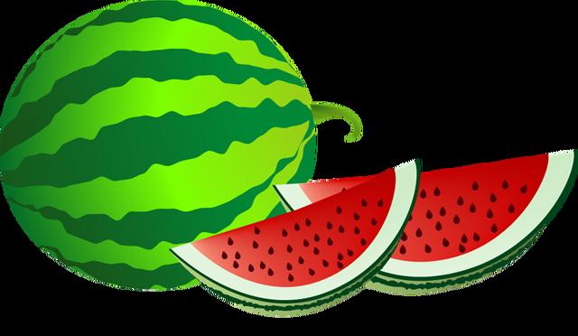 640x372 Watermelon clip art border free clipart images 4