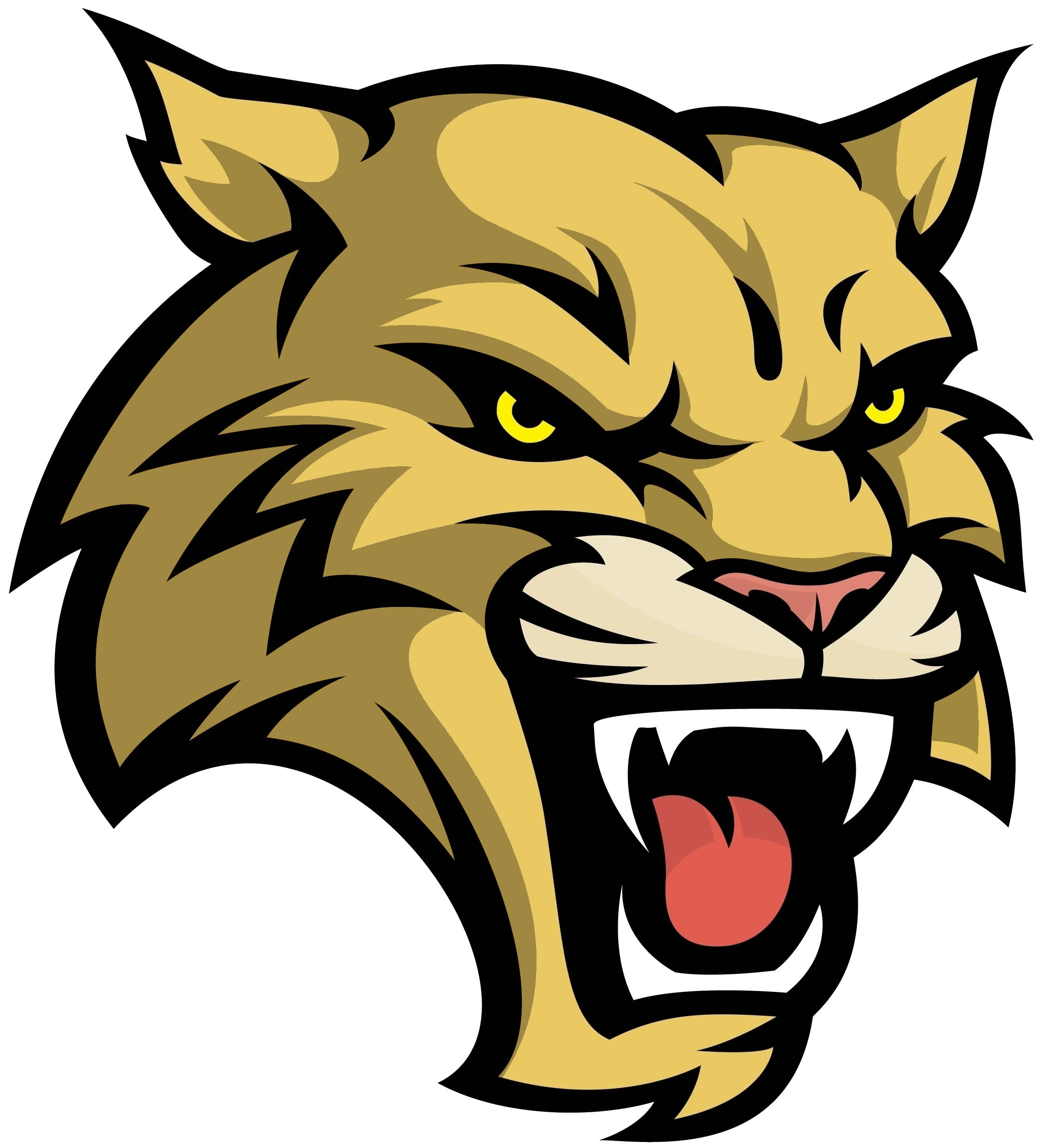 free wildcat clipart free download best free wildcat kentucky wildcat clipart free kentucky wildcat clipart free