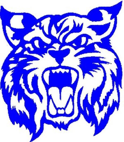 528x600 Wildcat Logo Blue Free Images