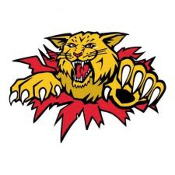 600x600 Wildcat Logo Clipart