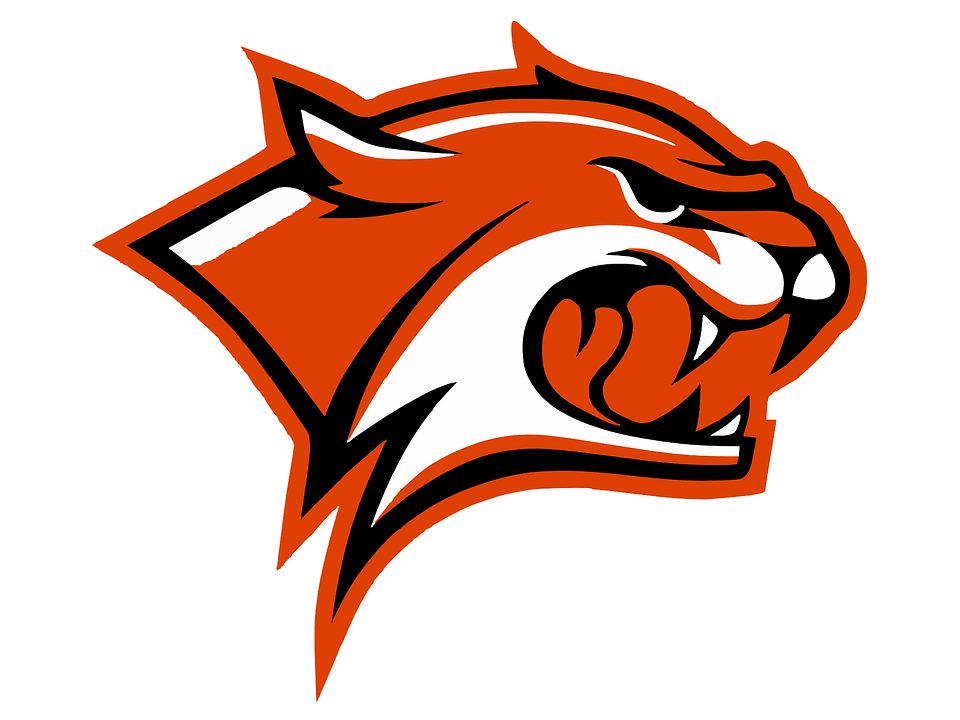 960x720 Wildcat Clipart Red
