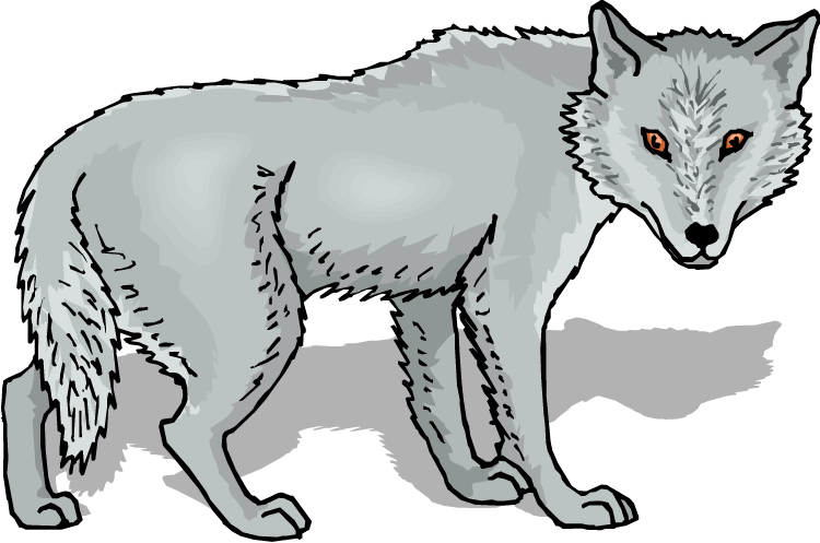 750x497 Gray Wolf Clip Art Free Clipart Images 2
