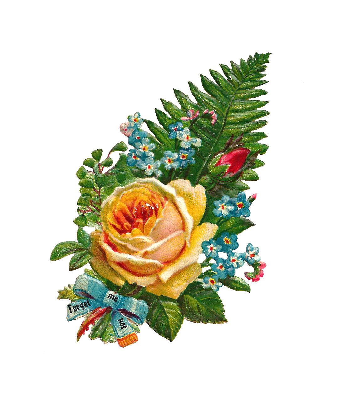 1080x1275 Antique Images Rose Clip Art Obrazki Decoupage