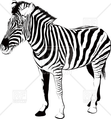 374x400 Zebra Silhouette Royalty Free Vector Clip Art Image