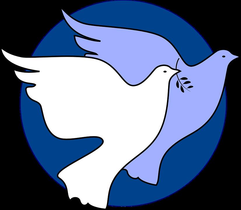 827x720 Dove Clipart Freedom