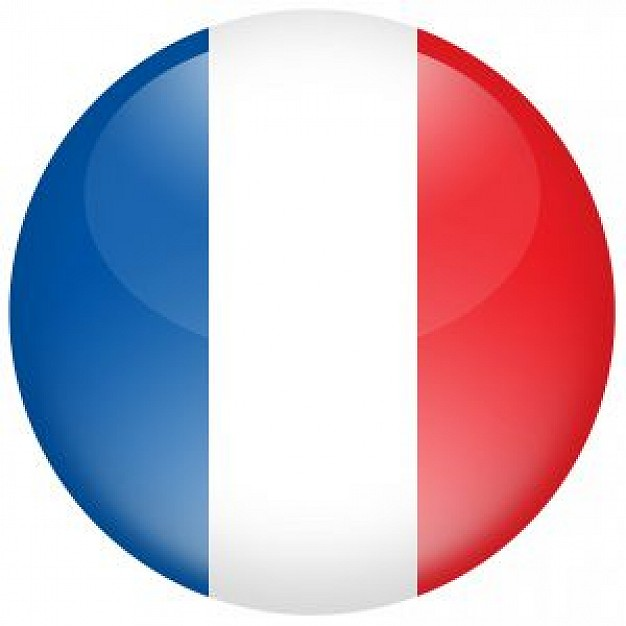 626x626 French Flag Photo Free Download