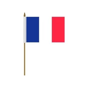 350x350 Box Of 100 France French Toothpick Flags Dinner Flags