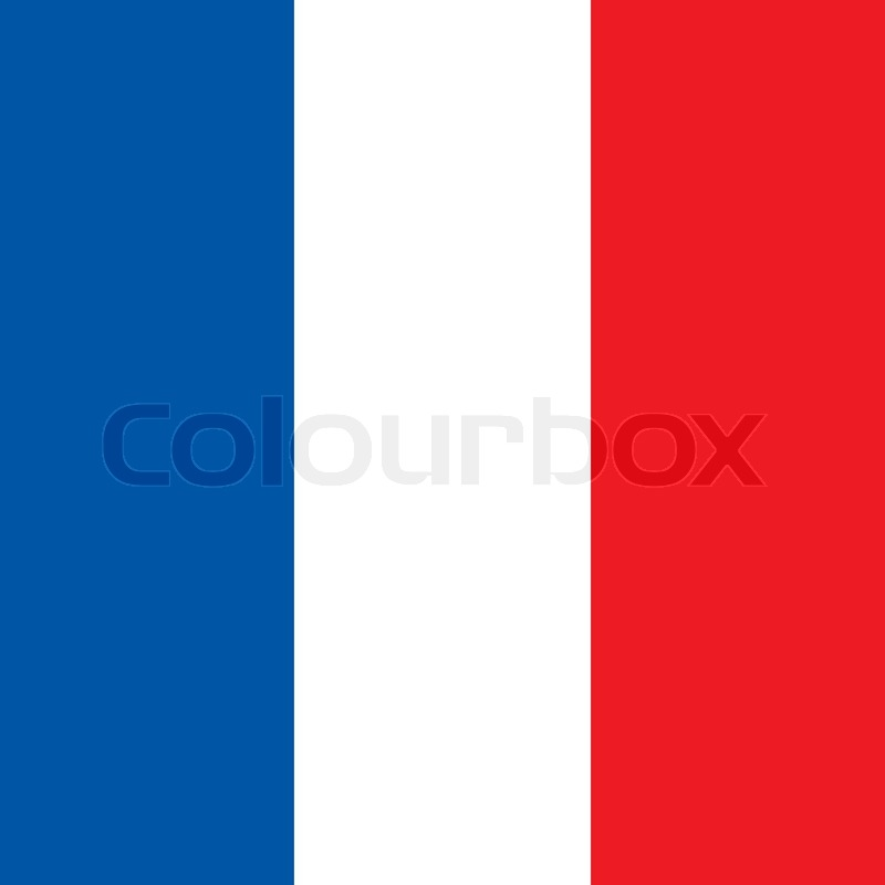 800x800 French Square Flag