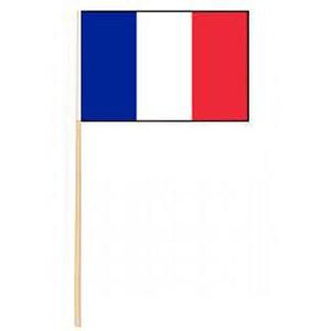 300x300 Mini French Flag