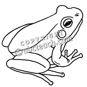 300x300 Bampw Clipart Frog