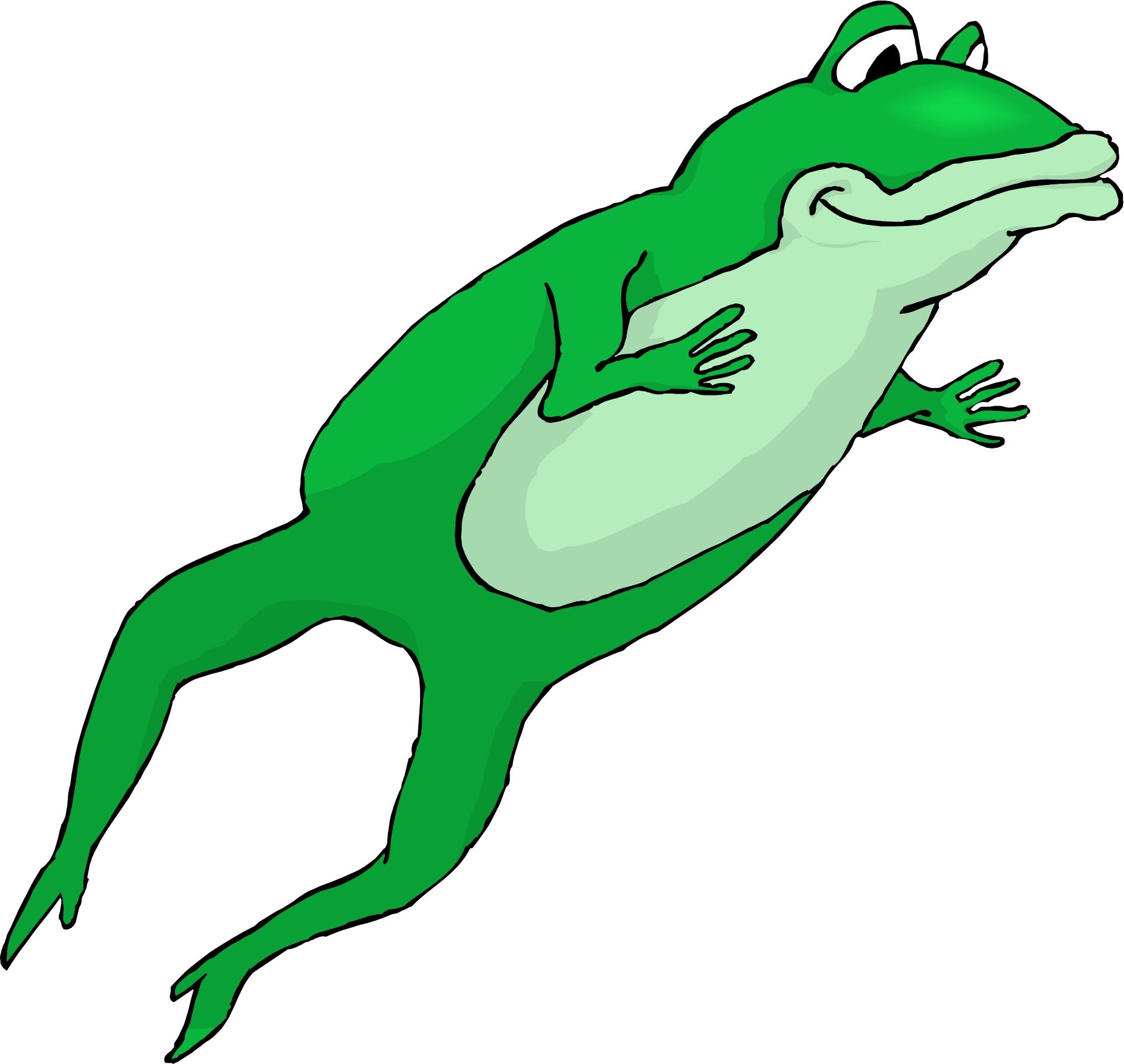 1889x1789 Frog Cartoon Pictures