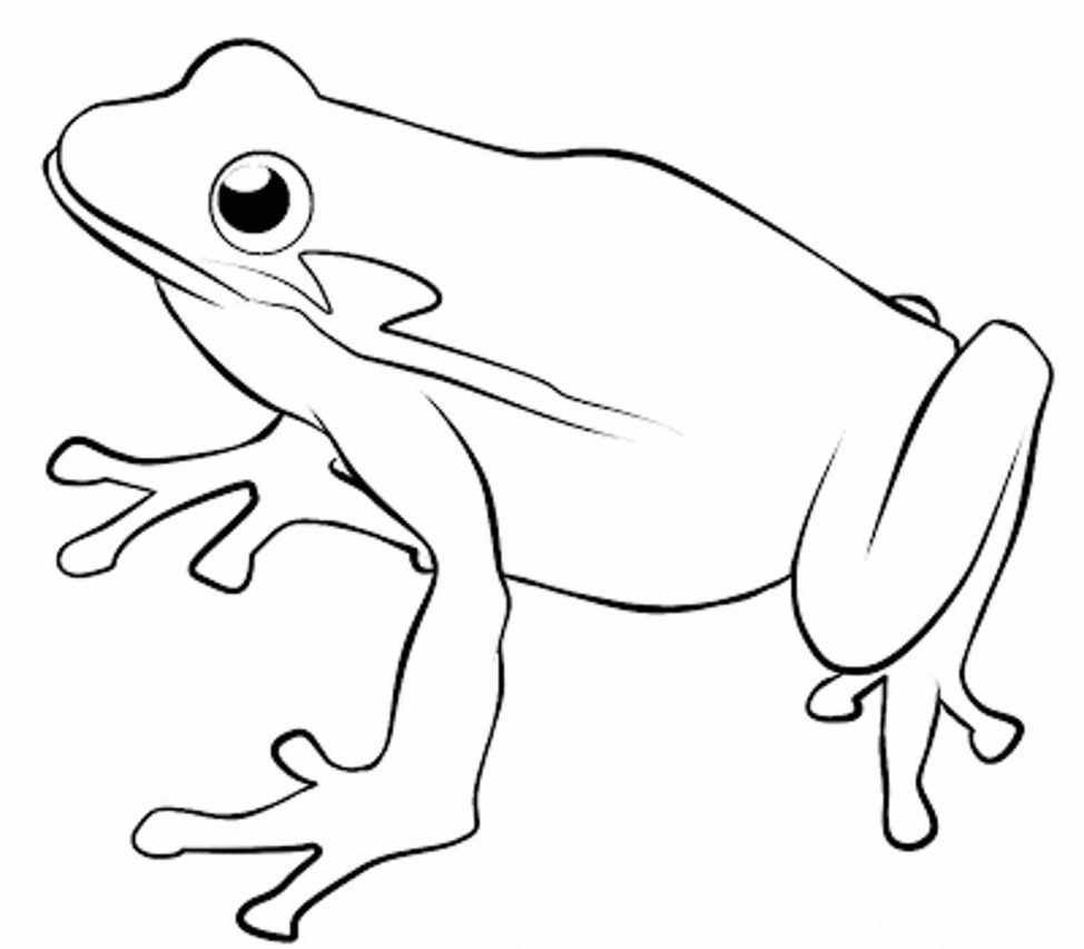 974x852 Coloring Pages Luxury Frog Drawing For Kids Coloring Pages Frog