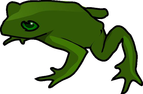 600x394 Frog 5 Clip Art