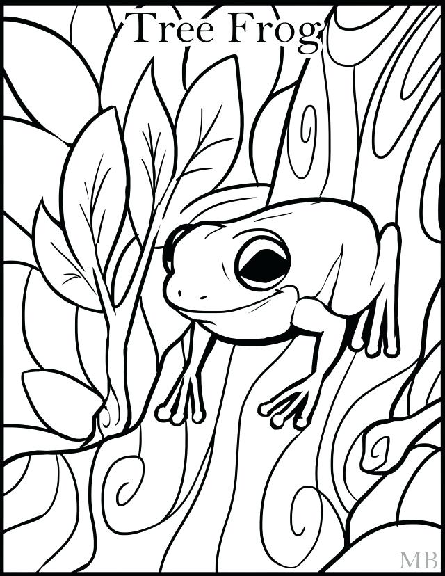 640x828 Frog Pictures For Kids Tree Coloring Page Clip Art Library