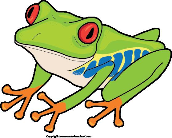559x449 Top 88 Frog Clip Art
