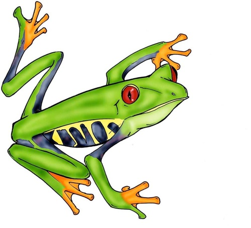 500x454 Free Tree Frog Clipart Image