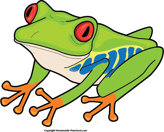 559x449 Free Tree Frog Clipart Image