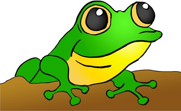 592x362 Green Tree Frog Clipart Free