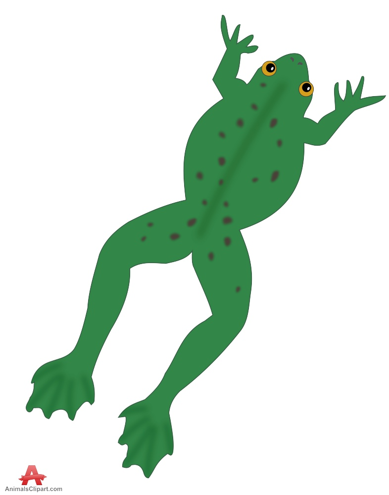 786x999 Jump Clipart Frog Leg