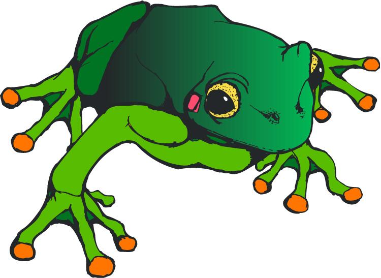 750x547 Frog Clip Art